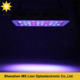 Luz inteligente del acuario LED de la luz 198W del acuario del agua salada LED para el coral