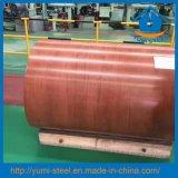 El acero galvanizado prepintado sumergido caliente del nuevo grano enrolla PPGI PPGL