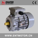 MS Electric Motor