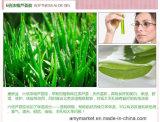 Gel do aloés do Softness que Whitening a proteção solar hidratando que repara o creme do Facial do creme do removedor da acne