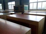 Tarjeta del MDF de la melamina de más de 150 colores, MDF de los muebles, 1220X2440X17m m, Denstiy: 720-850g