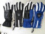 大人のスキー手袋または大人の冬の手袋または冬のバイクの手袋のバイクの手袋または解毒の手袋またはEcoの終わりの手袋またはOekotexの手袋かタッチ画面の手袋または防水手袋のジッパーの手袋