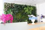 Дешевая стена зеленого цвета Verisimilitude цены