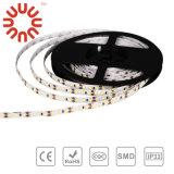Striscia di bassa tensione SMD3528 SMD2835 SMD5050 SMD5630 LED