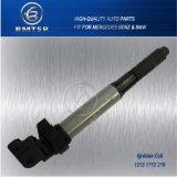 Bobina di accesione automatica dei pezzi di ricambio di migliori prezzi misura per l'OEM 12131712219 di E81 E46 E90