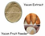 10:1 natural puro do pó do extrato de 100% Yacon, 20:1