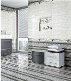 6D azulejo de la porcelana del azulejo de la pared interior de la inyección de tinta 300X600m m para la decoración casera (006)
