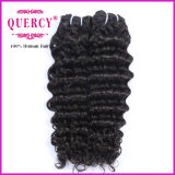 Weave Curly brasileiro de venda quente do cabelo humano da onda Curly da qualidade