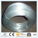 Productos más vendidos Galvanizad Wire / Galvanized Steel Wire