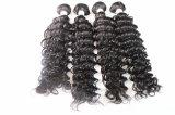 100%年のバージンの毛もつれの静かに加工されていないブラジルの人間の毛髪無し