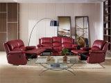 Sofa de cuir véritable de salle de séjour (C853)