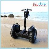 De dos ruedas auto-equilibrio del vehículo de camino eléctrico