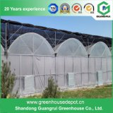 Qualitätsgrüne Plastikhäuser für die Landwirtschaft mit Kühlsystem