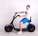 bici elettrica della montagna grassa della gomma di 60V 11ah