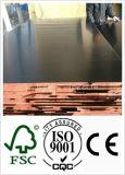 O núcleo do Poplar/folhosa recicl a classe enfrentada película da junção do dedo da madeira compensada (HBR001)