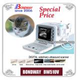 Varredor veterinário do ultra-som de Digitas (BW510V)