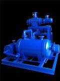 Jzj2b150-4.1 sradica l'unità di vuoto dell'Acqua-Anello