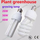 Lámpara fluorescente compacta-CFL26W36W46W