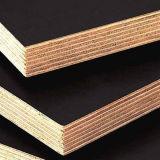 A película enfrentou a madeira compensada usada para o material de construção