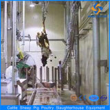 Bestiame Abattoir Process Line Machinery con lo SGS Certified