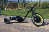 Tração Trike de Eelctric de três rodas com motor do cubo