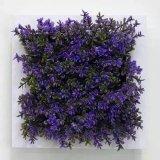 Plantas y flores artificiales de la planta suculenta Gu-SD-15117
