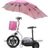 Heißer Verkaufs-elektrischer Mobilitäts-Roller mit Cer RoHS