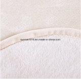 Cobertor coral do velo do cobertor macio super quente da flanela da venda Sr-B170212-22