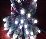 Luz del pixel de la alta calidad F5 LED DC5V 9m m LED del surtidor de China