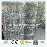Reticolato esagonale della rete metallica per la rete fissa del pollo/rete fissa animale