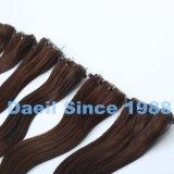 Выдвижение волос микро- шарика Weft