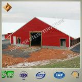 Camera di pollo prefabbricata d'acciaio nell'azienda avicola