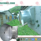 Poultry House를 위한 나비 Type Exhaust Fan