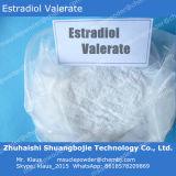 Weibliches Hormon-Rohstoff-Puder Estradiol Valerianat 979-32-8