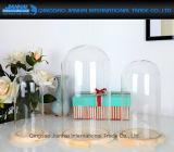 De Stolpen van de Koepel van de Glazen kap van de Vertoning van het glas Met Houten Basis