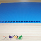 Twinwall/Coreflute/물결 모양 PP 플라스틱 장