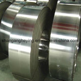 Streifen-Stahl des Zink-50-120g heißer eingetauchter galvanisierter des Stahl-Strip/Gi /PPGI/Gl