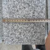 할인 G603 백색 화강암은 망치로 쳐진 완료된 600*600*20 부시를 규격대로 잘랐다