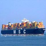 Linha barata da expedição do mar do transporte da logística de Guangzhou China a Manzanillo México