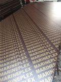 Madera contrachapada Shuttering hecha frente película de Brown
