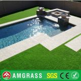 30mm Height Durable e Beautiful Artificial Lawn para Landscaping