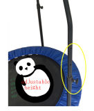 Tremplin personnalisé par Sld48inch avec la balustrade, tremplin de forme physique, tremplin rond