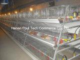 un matériel de cage de poussins de poulette de bâti pour le fermier