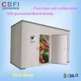 100mmの中国の最もよい冷蔵室
