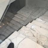 Mattonelle di marmo bianche di Calacatta e mattonelle della parete