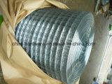 A qualidade superior galvanizou o engranzamento de fio soldado do ferro