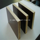 18mm Marine Plywood Poplar Core 브라운 Film WBP Glue