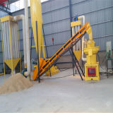 Sale를 위한 높은 Quality Biomass Pellet Mill