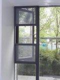 Het Onderzoek van het venster