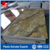 Línea de mármol de imitación de la protuberancia de la tarjeta del PVC del suelo del Piedra-Plástico